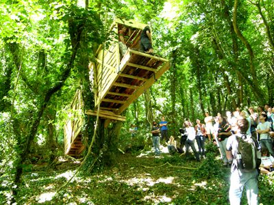 Treehouse designed by Piers Taylor and Meredith Bowles